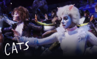 cats broadway show.png