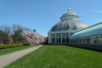 New_York_Botanical_Garden.jpg